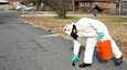 Kuolleita lintuja kerättiin kadulta Beeben kaupungissa Arkansasissa.