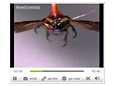 Tiedelehti New Scientist kertoo kauko-ohjattavista hyönteisistä myös videon keinoin nettisivullaan.