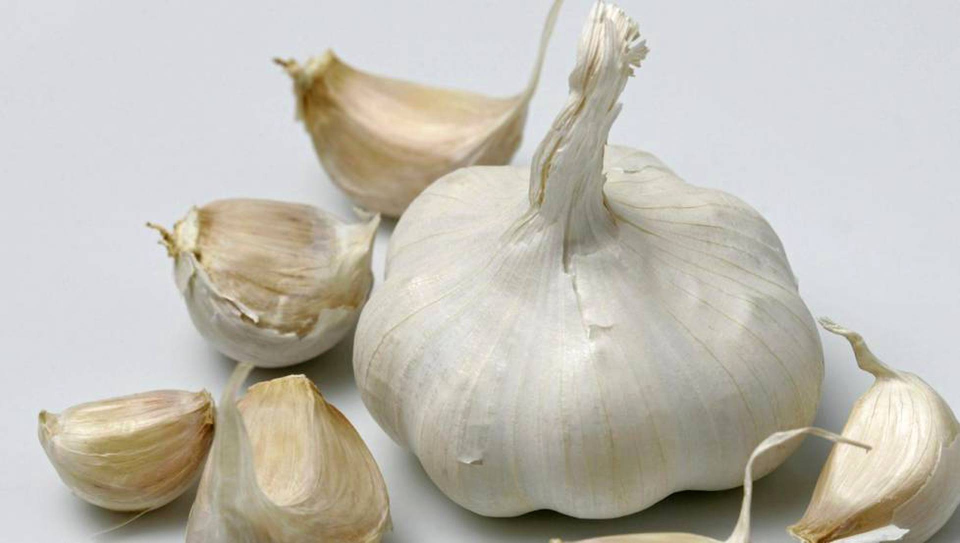 Sipulikanava Onion Osoite