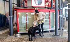 Järvenpään K-Citymarketin sisäänkäynnin luo on perustettu ilmainen Hachiko-koiraparkki, jonne lemmikin voi turvallisin mielin jättää ostosten ajaksi.