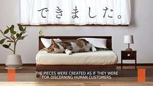 Kissoille tehdään erikoisia huonekaluja Japanissa