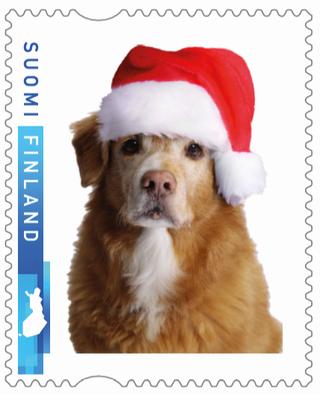 Tänä jouluna liikkeellä oli Saken kuvalla varustettuja postimerkkejä.