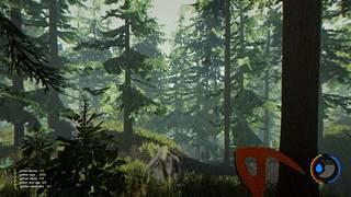 Pelin miljöö on pohjoisamerikkalainen metsä, joka tuntuu tutulta myös suomalaispelaajan mielestä.