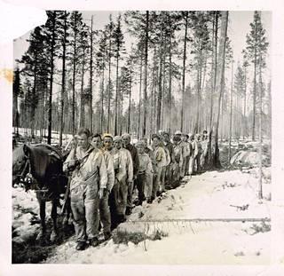 Reput on laitettu rekeen, miehet kävelevät välillä ilman taakkaa.