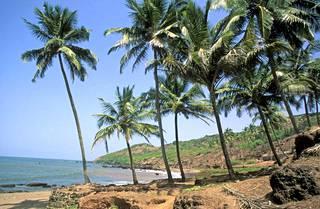 Goa on tunnettu, ei pelkästään joogasta, vaan myös kivoista rannoistaan ja hyvästä intialaisesta ruoasta. Finnair aloittaa suorat lennot kohteeseen ensi marraskuussa.