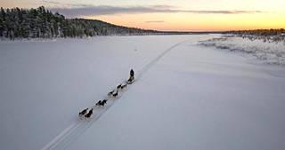Muotkatunturin erämaassa riittää koluttavaa: pisimmillään Myllykangas viettää tunturissa viisi päivää seikkaillen koiriensa kanssa.