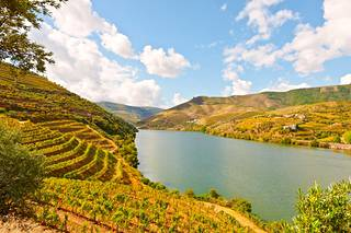 Dourojoen ympärille levittäytyvät viininviljelysalueet ovat kaunista katseltavaa.