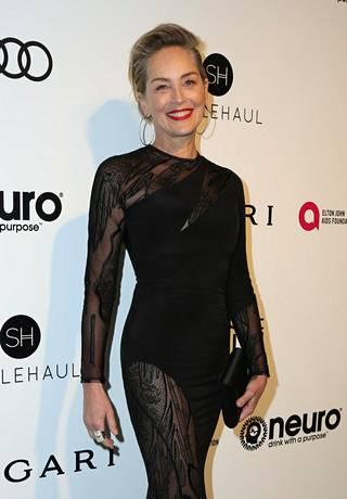 Sharon Stone kuvattuna helmikuussa.