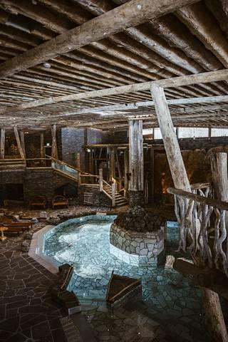 Kattoa peittävät veden uurtamat, yli 500 vuotta vanhat uppotukit.