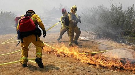 Palomiehet ovat saamassa niskalenkin maastopalosta.