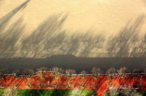 Rein-joki tulvii rankkojen sateiden vuoksi Düsseldorfissa Saksassa. Puiden varjot muodostavat kuvioita veteen.