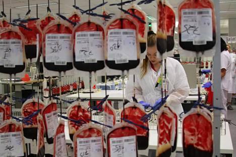 Veripalvelun tuotantopuolella neljän verenluovuttajan verihiutaleet yhdistetään niin sanotussa junassa.