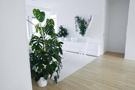 Miia Salmen kodin sisustuksessa on myös ripaus japanilaista, minimalistista tyyliä. Lattia on bambua, ja Salmi kertoo, että materiaali on niin kestävää, että se kestää useamman sukupolven käytön.