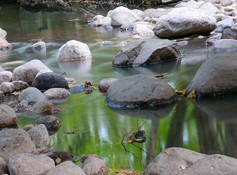 Longinoja on talkoovoimin muuttunut puroksi ja vesistöksi, jossa taimenen luontainen lisääntyminen on turvattu.