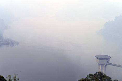 Maastopalojen paksua savua Sydneyn lähistöllä.
