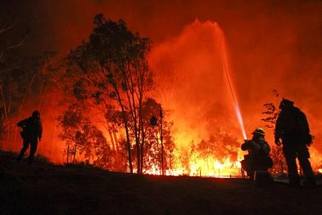 Palomiehet yrittivät torjua liekkejä San Diegossa.