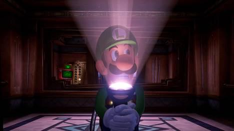 Luigi pelkää kaikkia ja kaikkea - ja tarjoaa näin useita riemunaiheita.