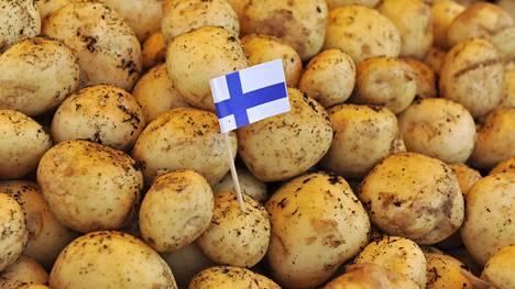 Kotimaista uutta perunaa voi saada jo kesäkuun alussa.