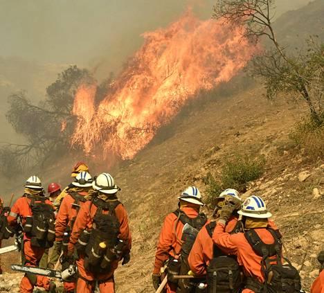 Palomiehet yrittävät epätoivoisesti hallita tulimerta.