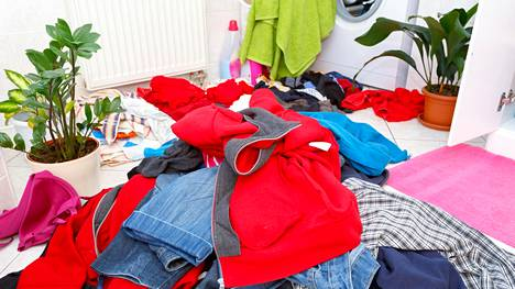 Asunnon jakaminen voi olla haaste siisteyttä rakastavalle.
