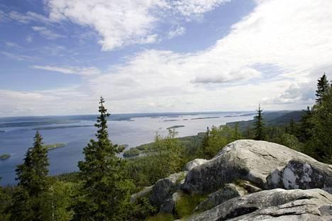 Suomessa riittää vettä ja metsää. Kaunis näkymä voi kätkeä puolustuksellisia salaisuuksia.