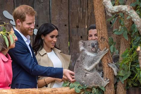 Prinssi Harry ja herttuatar Meghan ovat parhaillaan Australiassa 16 päivää kestävällä vierailulla. Tiistaiaamuna pari vieraili eläintarhassa.