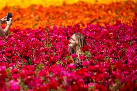 Emma McCain otti värikästä kuvaa ystävästään Norah Milleristä viime viikolla Carlsbadissa.