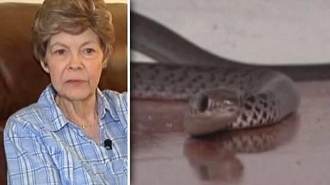 Käärmeet tunkeutuivat 73-vuotiaan Jan Perillon asuntoon Floridassa.
