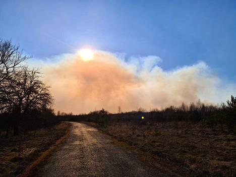 5. huhtikuuta otettu valokuva metsäpaloista Tshernobylin ydinvoimalan läheisyydessä.