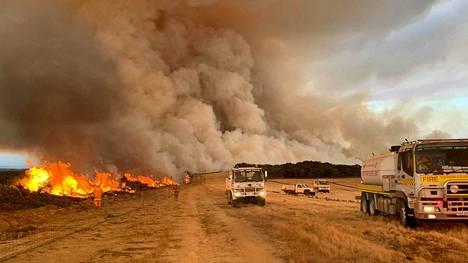 Kuuma ilma, kuiva maasto ja kova tuuli loivat otolliset olosuhteet palojen nopealle leviämiselle.