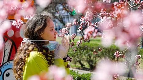 Koronaviruksen vuoksi hengityssuojaimella varustautunut tyttö paljasti kasvonsa tunteakseen kukkien tuoksun Pohjois-Makedonian Skopjessa viime perjantaina.