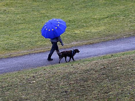 Koiranulkoiluttaja Saksan Münchenissä tammikuussa.