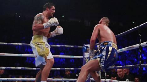 """""""Täydellinen nyrkkeilijä"""" Oleksandr Usyk tyrmäsi kotiyleisön suosikin tylysti Manchesterissa"""
