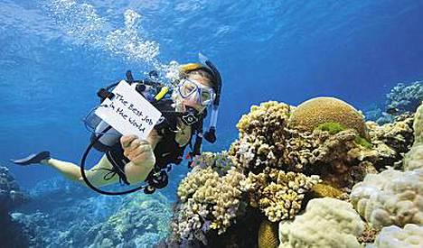 Tänne töihin! Lizard-saari sijaitsee maailman upeimmilla sukellusvesillä.