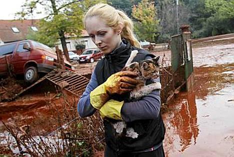 Unkarilaisnainen pelasti kissan ruskean myrkkylietteen tieltä.