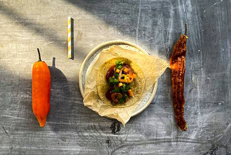 Tacotitan suositut Pollo tacot sisältävät muun muassa mausteista kanaa, salsaa ja pico de galloa.