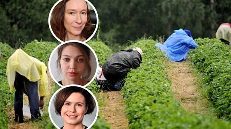 Asiantuntijoiden mukaan ulkomaisten kausityöntekijöiden tilanteessa olisi parantamisen varaa.