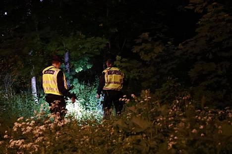 Poliisi sai ensimmäisen ilmoituksen villisikahavainnosta myöhään maanantai-iltana.