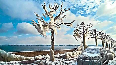 Sveitsiläisen Versoix'n maisema muuttui tammikuussa vuonna 2005 myrskyn seurauksena kuin jääveistokseksi.