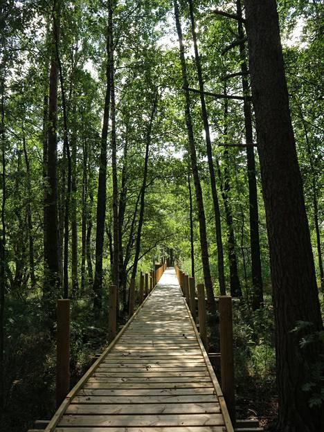Kaunis silta johdattaa kulkijan sadan vuoden taakse.