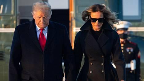 Trumpit kuvattuna joulukuussa.