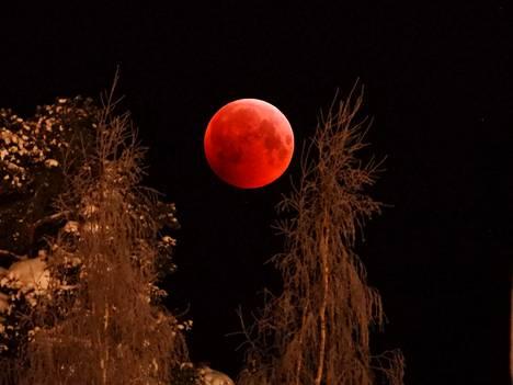 IS:n lukijan upea kuva kuunpimennyksestä. Kuva otettu Järvenpäässä 21. tammikuuta 2019.