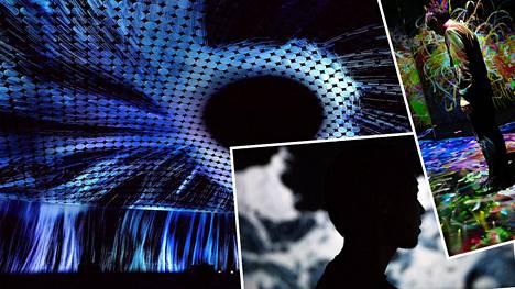 Jäikö Amos Rexin supersuosittu näyttely väliin? Katso sisäänpäässeiden upeat kuvat
