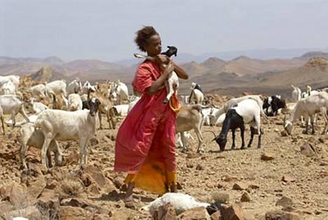 Dirie on köyhään paimentolaisperheeseen Somalian aavikolla syntynyt tyttö.
