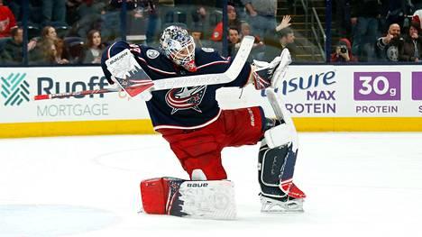Elvis on rokannut NHL:ssä.