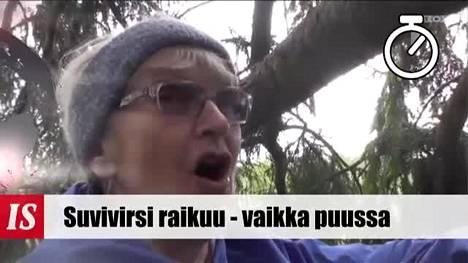 Uutisminuutti perjantai 30.5.2014