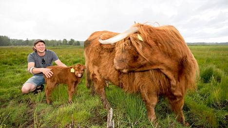 Maanviljelijä Sakari Peltola kasvattaa Ylämaankarjaa teuraaksi. Hänellä on 30 teuraseläintä. Ilmastonmuutokseen Peltola suhtautuu skeptisesti.