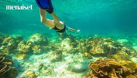 Kemikaaleja liukenee mereen viemärien kautta ja aurinkorasvaa käyttävien uimarien iholta.