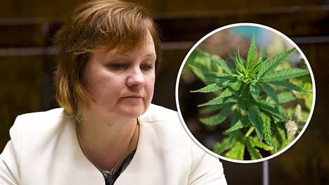 """Kansanedustaja Anne Kalmari (kesk) rinnastaa mielipidekirjoituksessaan """"ilmastoahdistuksesta ja syömishäiriöistä kärsivät helsinkiläisnuoret"""" ja """"maaseudun mainiot nuoret"""","""