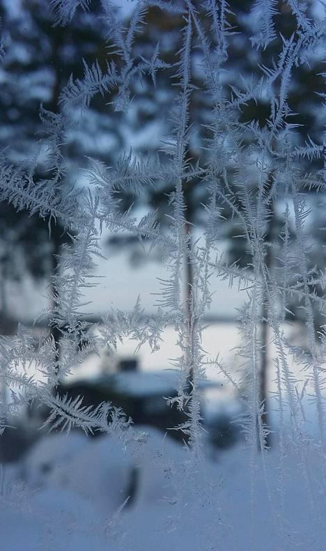 Talvikuva Kangasalta.